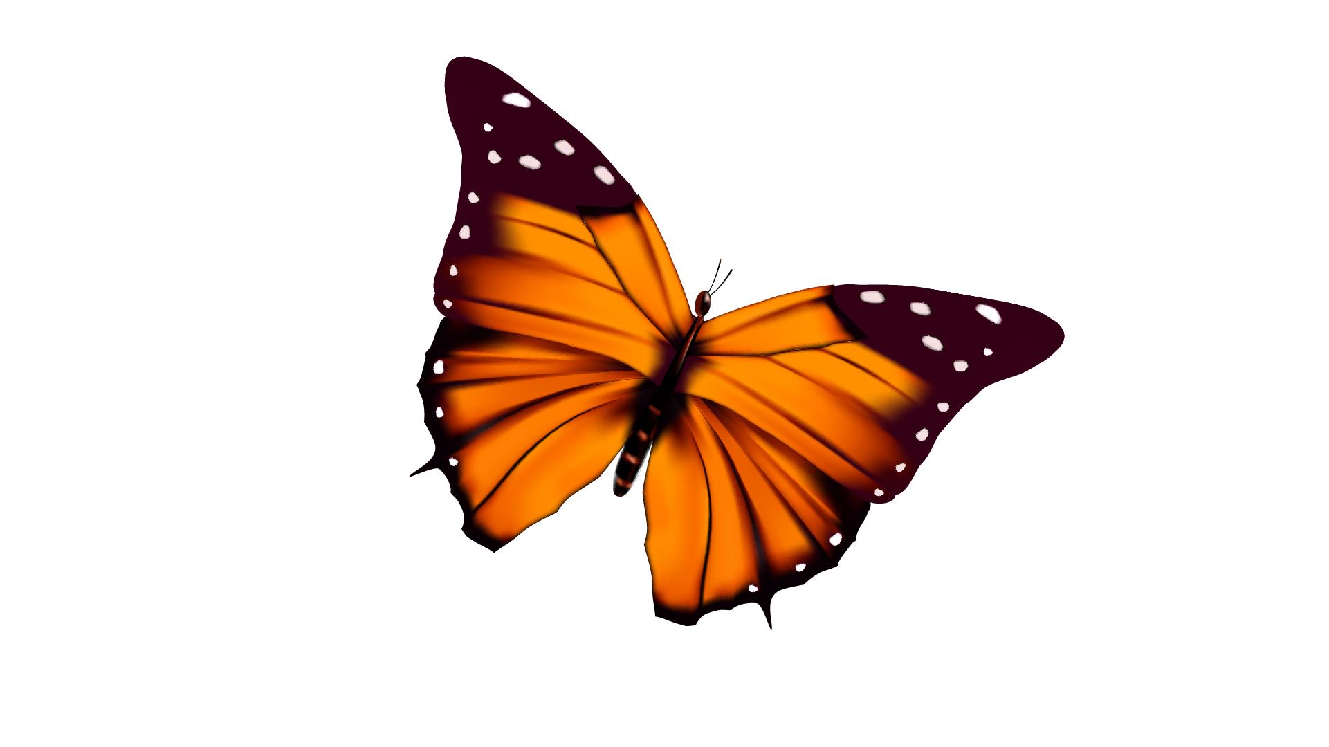 Schmetterling zu die großen 5 Themen