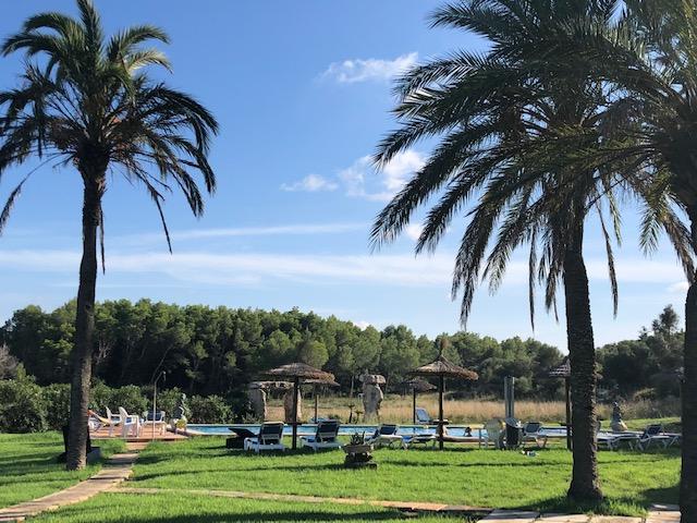 Mallorca Garten Pool